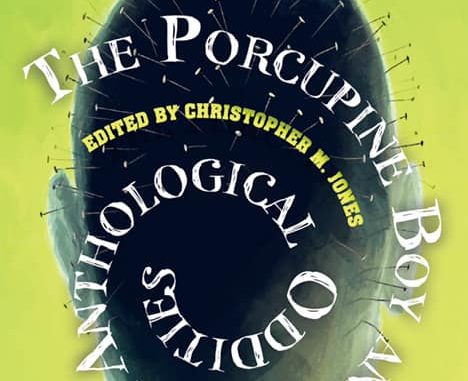 The Porcupine Boy cover